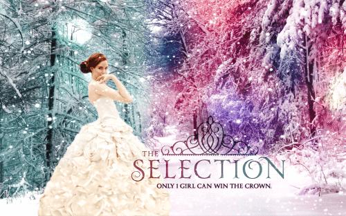 Books-Like-the-Selection